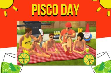 Pisco Day in Yareel